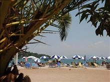 Gouvia Hotel: Beach area - photo 9