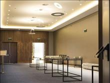 Makedonia Palace Hotel - photo 7